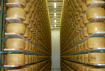 Index_parmiggiano-reggiano